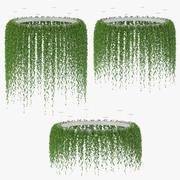 吊り植物v2 3d model