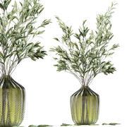 緑のガラスの花瓶のオリーブの茎 3d model