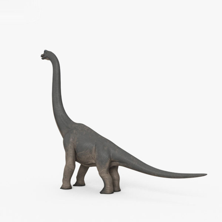 Brachiosaurus HD royalty-free 3d model - Preview no. 2