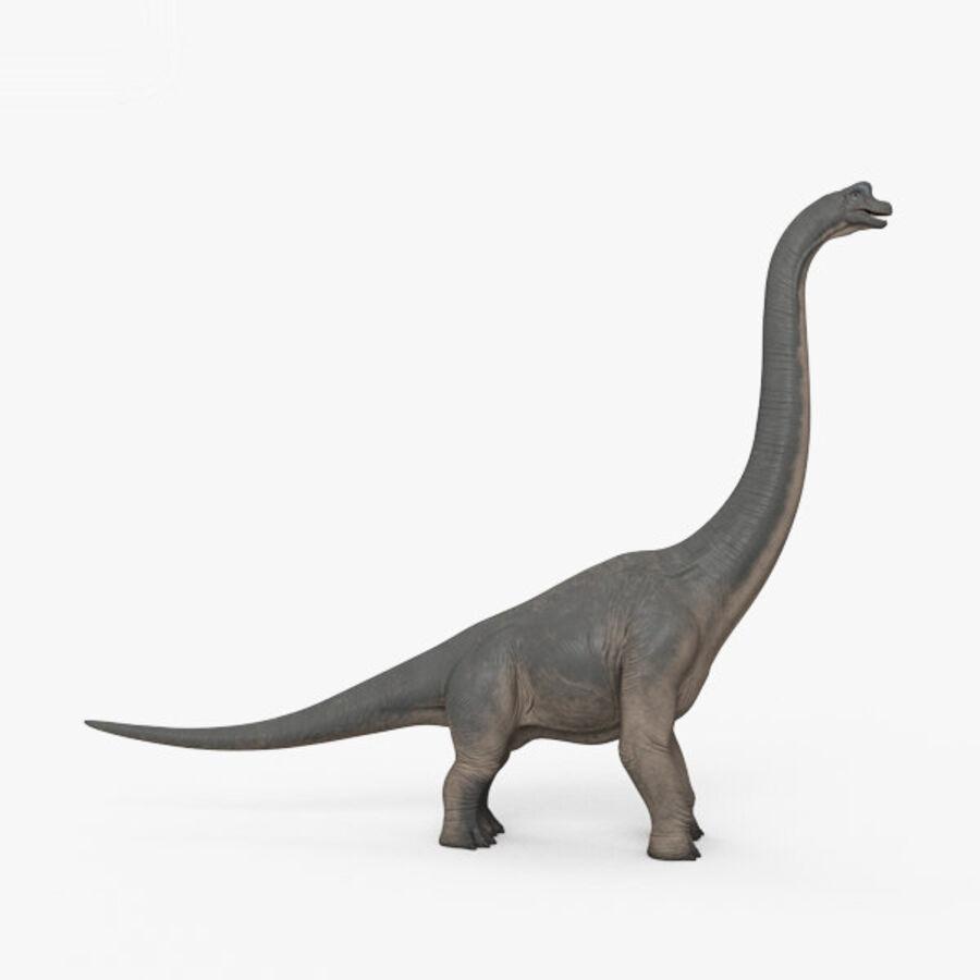 Brachiosaurus HD royalty-free 3d model - Preview no. 14