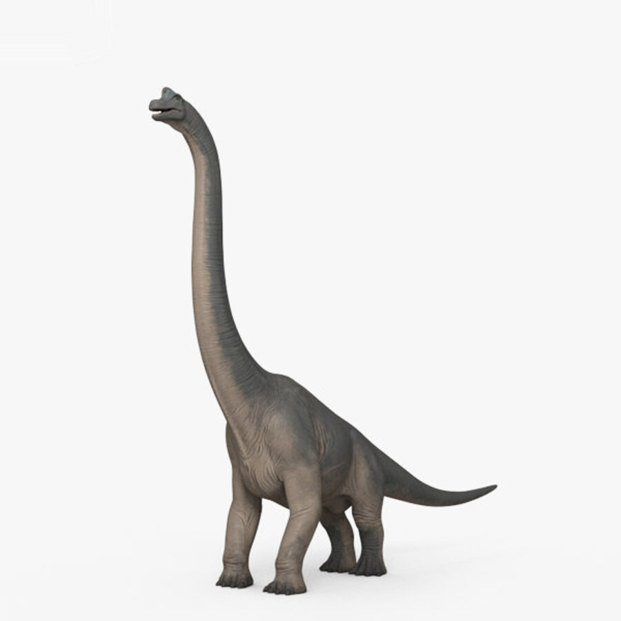 Brachiosaurus HD royalty-free 3d model - Preview no. 1