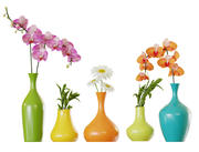 colored vases 3d model