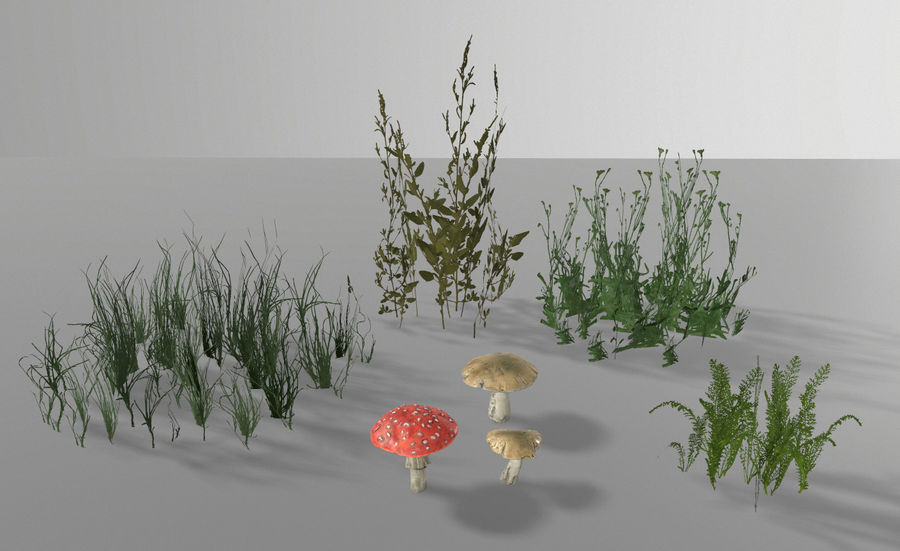 Forest plants royalty-free 3d model - Preview no. 1