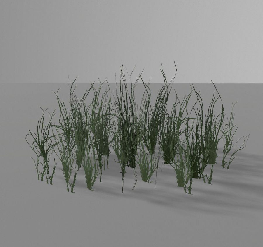 Forest plants royalty-free 3d model - Preview no. 7