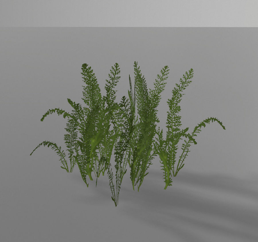 Forest plants royalty-free 3d model - Preview no. 6