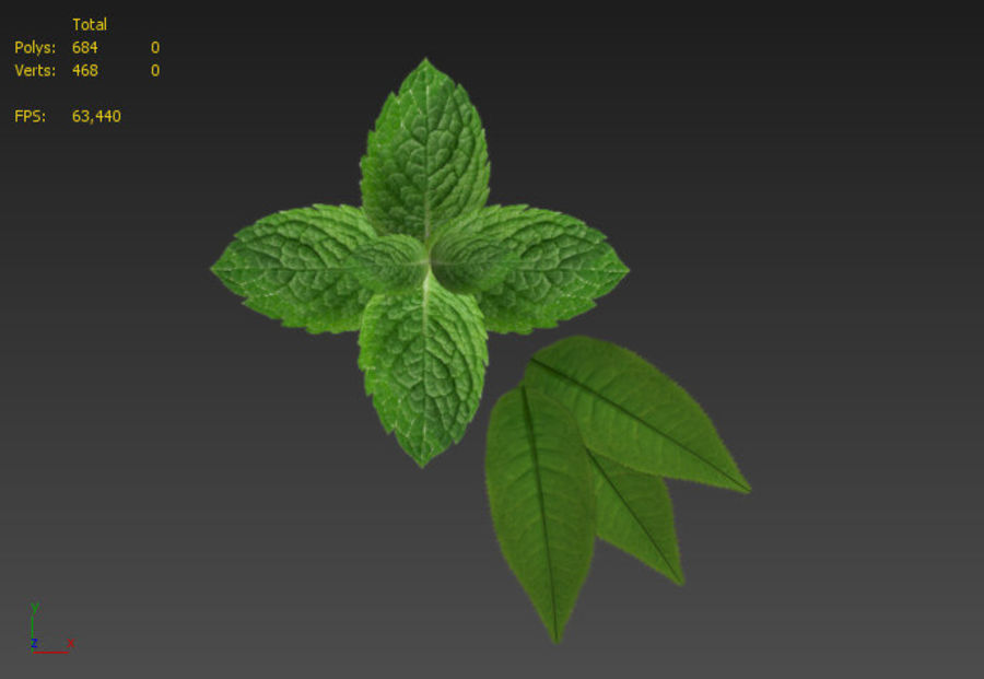 Mint royalty-free 3d model - Preview no. 6