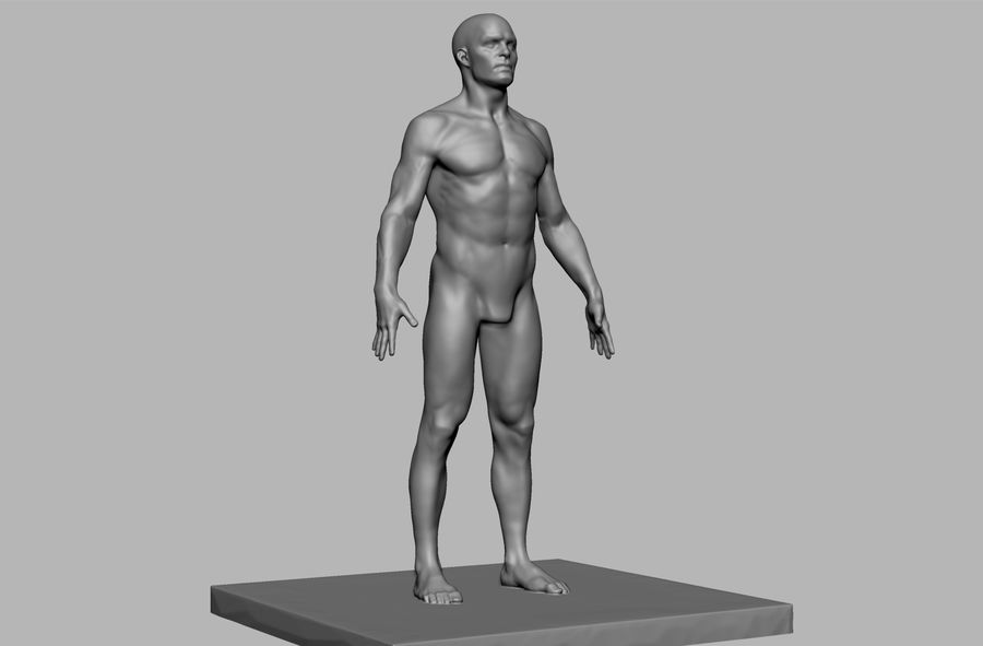Mannelijke anatomie figuur royalty-free 3d model - Preview no. 2