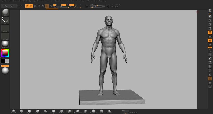 Mannelijke anatomie figuur royalty-free 3d model - Preview no. 16