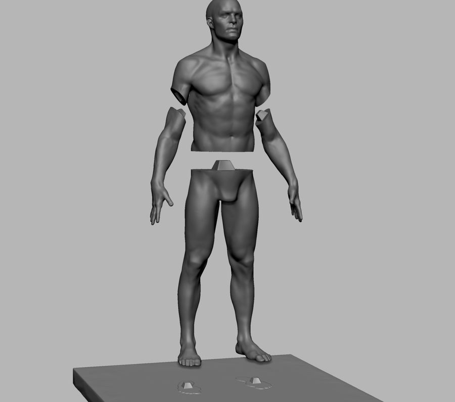 Mannelijke anatomie figuur royalty-free 3d model - Preview no. 10