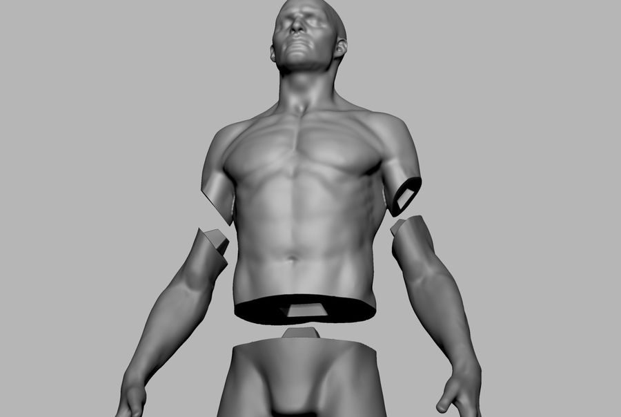 Mannelijke anatomie figuur royalty-free 3d model - Preview no. 12