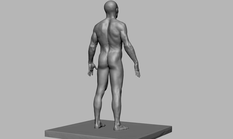 Mannelijke anatomie figuur royalty-free 3d model - Preview no. 4