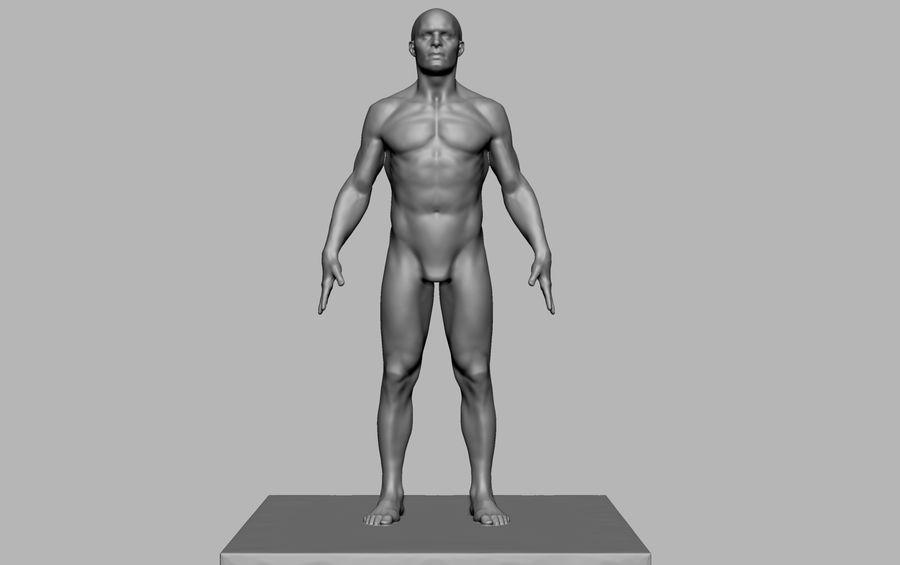 Mannelijke anatomie figuur royalty-free 3d model - Preview no. 1