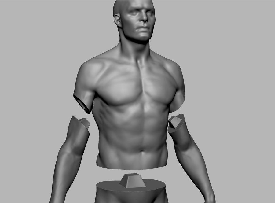 Mannelijke anatomie figuur royalty-free 3d model - Preview no. 11
