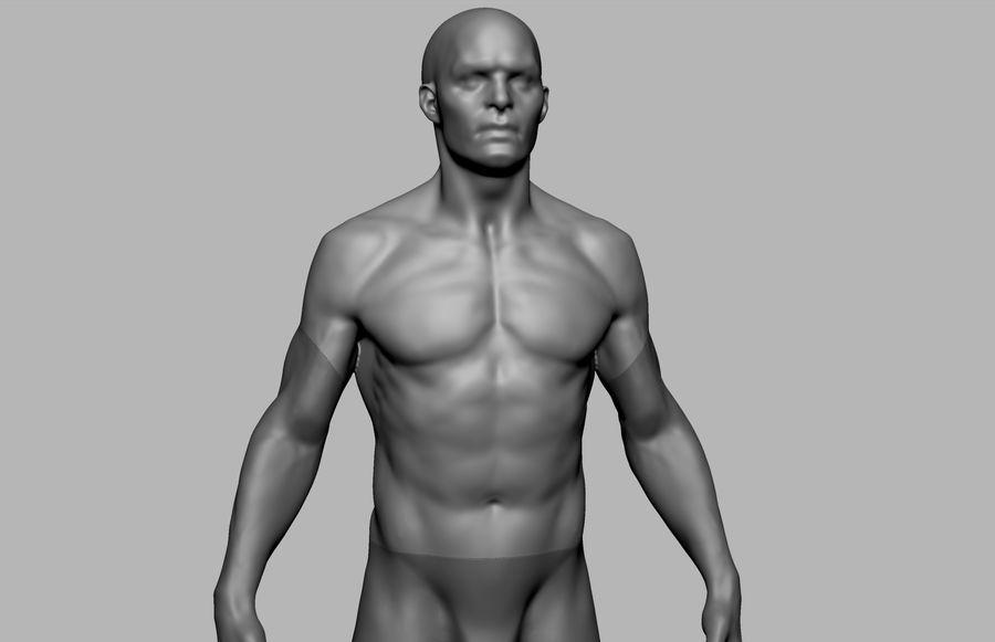 Mannelijke anatomie figuur royalty-free 3d model - Preview no. 9
