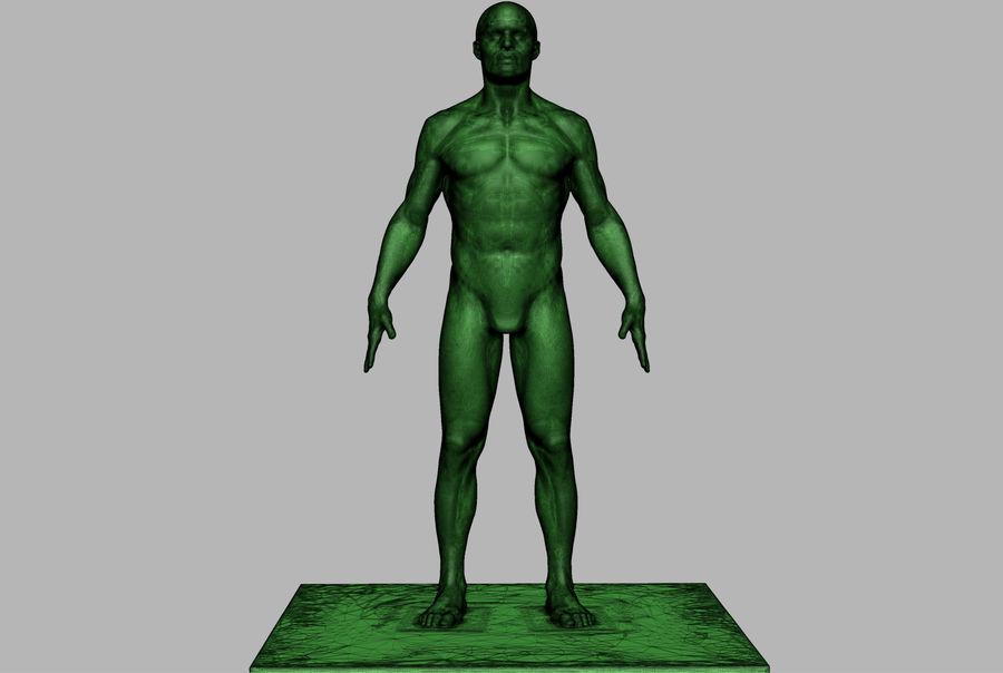 Mannelijke anatomie figuur royalty-free 3d model - Preview no. 8
