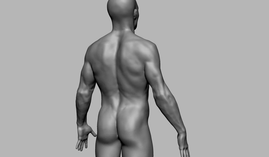 Mannelijke anatomie figuur royalty-free 3d model - Preview no. 7