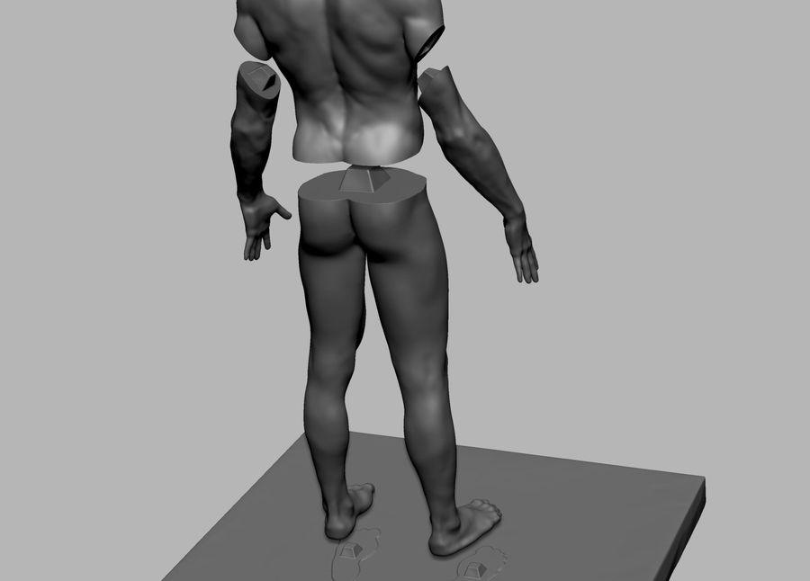 Mannelijke anatomie figuur royalty-free 3d model - Preview no. 14