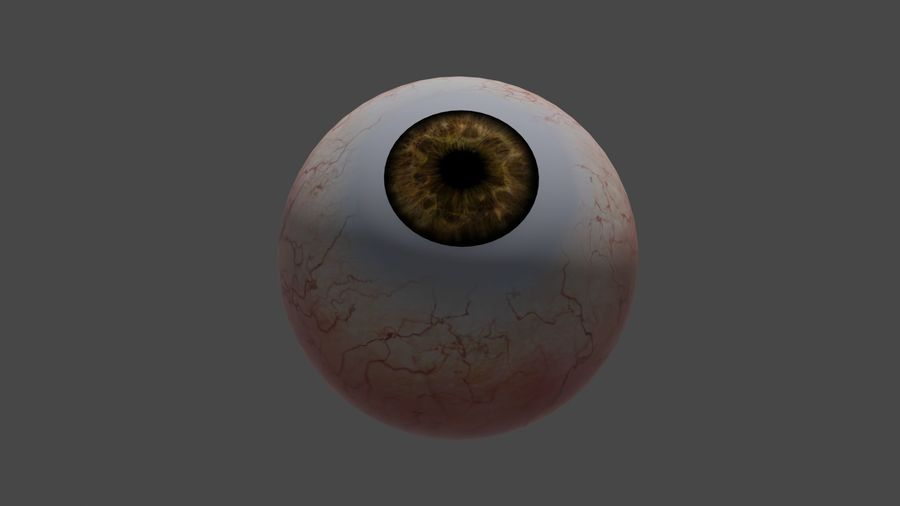 OJO HUMANO (MENSCHLICHES AUGE) royalty-free 3d model - Preview no. 5
