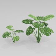 Tropical Palm G45 3d model