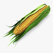 Corn Cob 1 3d model