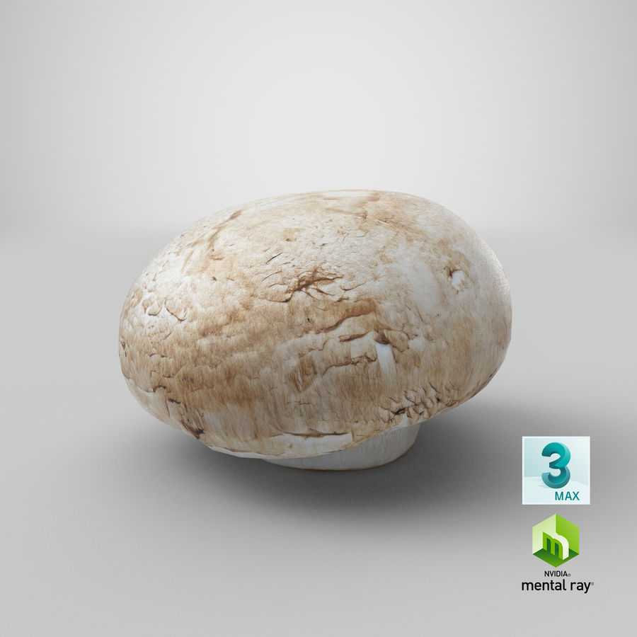 White Button Mushroom 03 Spiel bereit royalty-free 3d model - Preview no. 24