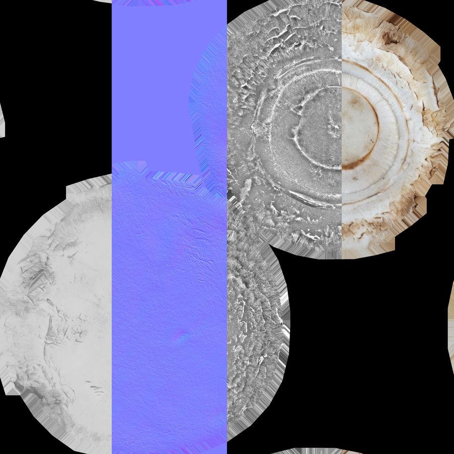 White Button Mushroom 03 Spiel bereit royalty-free 3d model - Preview no. 20
