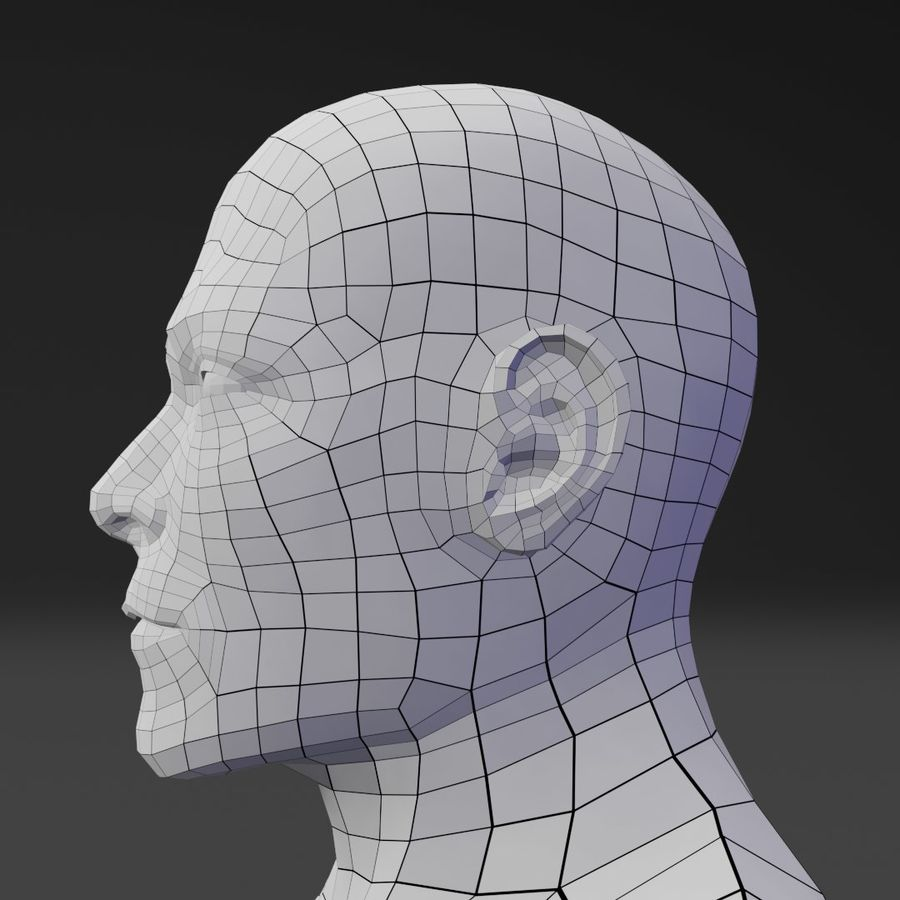 Male Base Body Mesh royalty-free 3d model - Preview no. 5