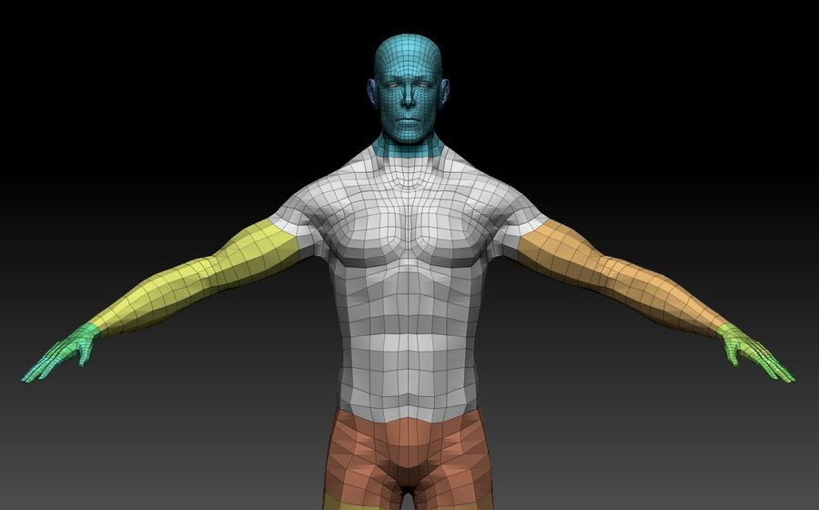 Male Base Body Mesh royalty-free 3d model - Preview no. 7