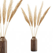 Trockene Zweige des Pampasgrases in der Glasvase 3d model