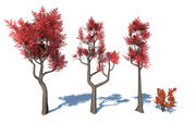 Coleção Lowpoly estilizada de árvore colorida 3d model