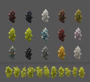 Коллекция Виноградных Лоз 3d model