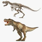 Maya için İskelet Fosili Arma Koleksiyonu ile Tyrannosaurus Rex 3d model