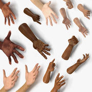 Hands Rigged Collection for Cinema 4D 3d model