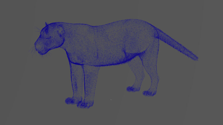 Panthera onca royalty-free 3d model - Preview no. 22