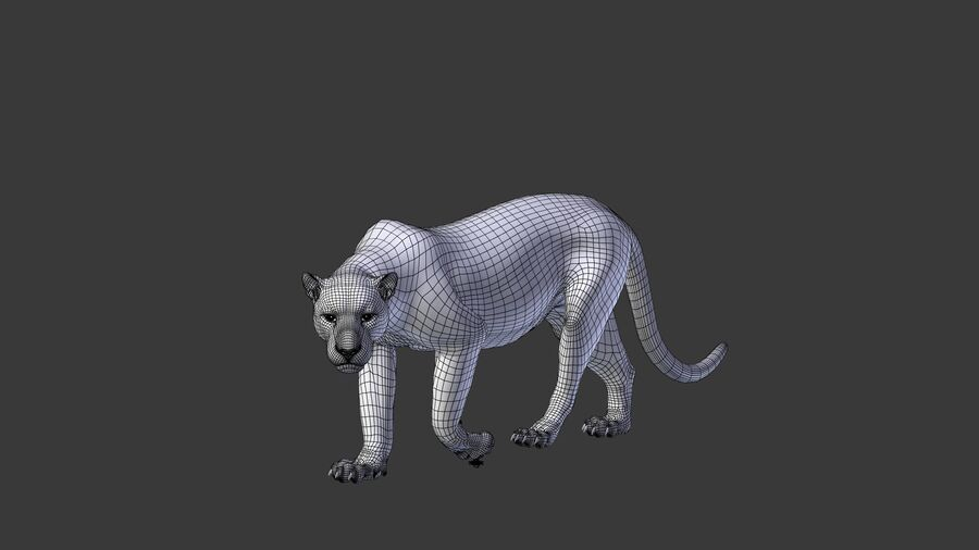 Panthera onca royalty-free 3d model - Preview no. 19
