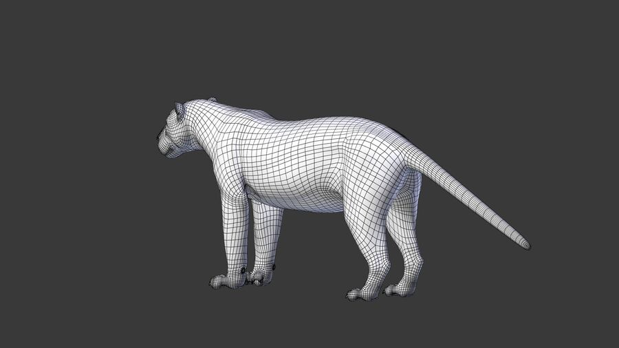 Panthera onca royalty-free 3d model - Preview no. 15