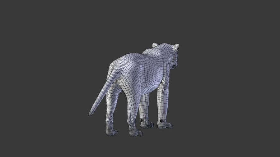 Panthera onca royalty-free 3d model - Preview no. 14