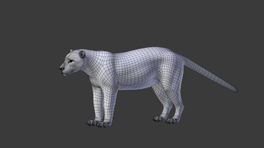 Panthera onca royalty-free 3d model - Preview no. 11