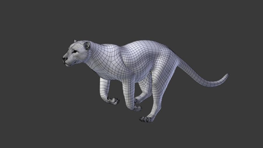 Panthera onca royalty-free 3d model - Preview no. 18