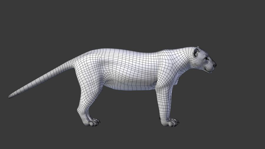 Panthera onca royalty-free 3d model - Preview no. 13