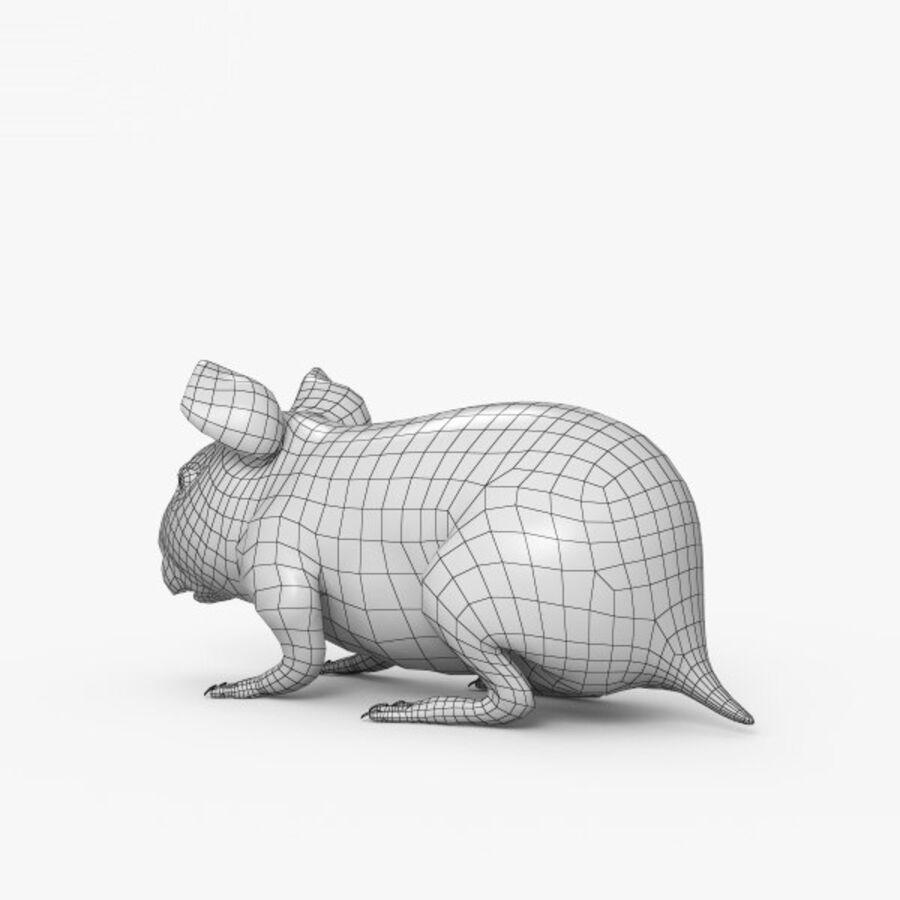 Meerschweinchen HD royalty-free 3d model - Preview no. 3