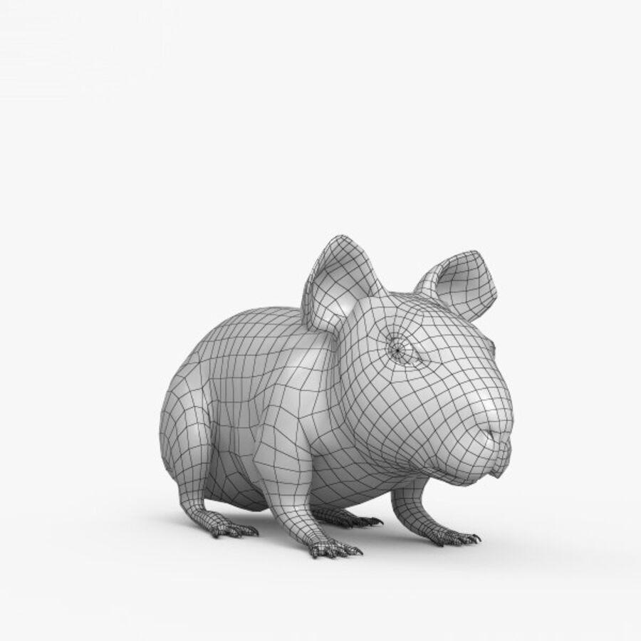 Meerschweinchen HD royalty-free 3d model - Preview no. 13