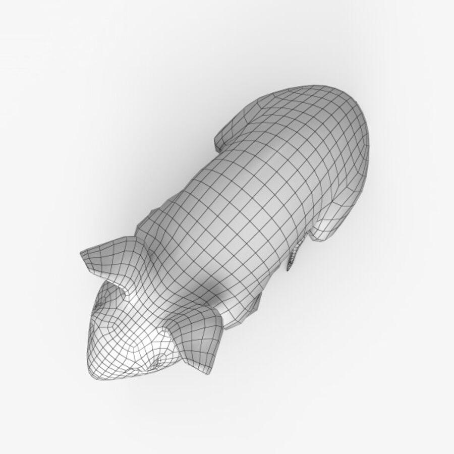 Meerschweinchen HD royalty-free 3d model - Preview no. 11