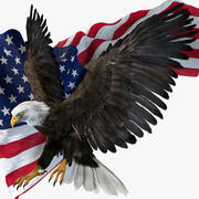 American Eagle Fur Animated Rigged 3d model