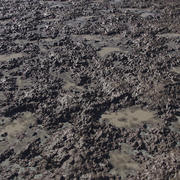 Trama di fango 3d model