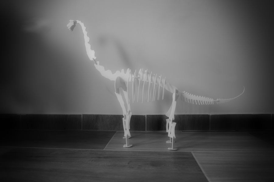 Brachiosaurus Puzzle royalty-free 3d model - Preview no. 2