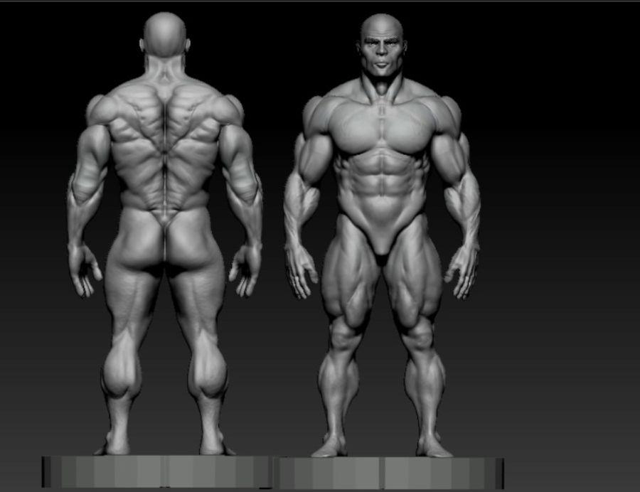 base mesh bodybuilder royalty-free 3d model - Preview no. 5