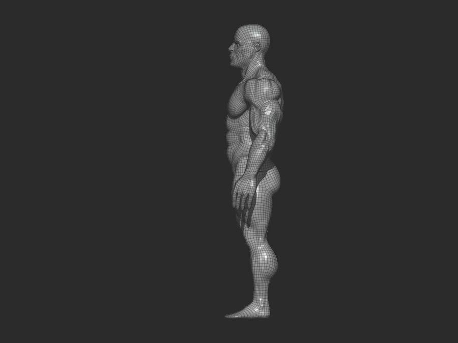 base mesh bodybuilder royalty-free 3d model - Preview no. 8