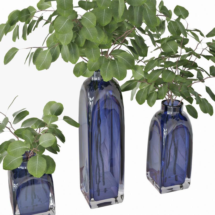 Eucalyptus 05 royalty-free 3d model - Preview no. 12