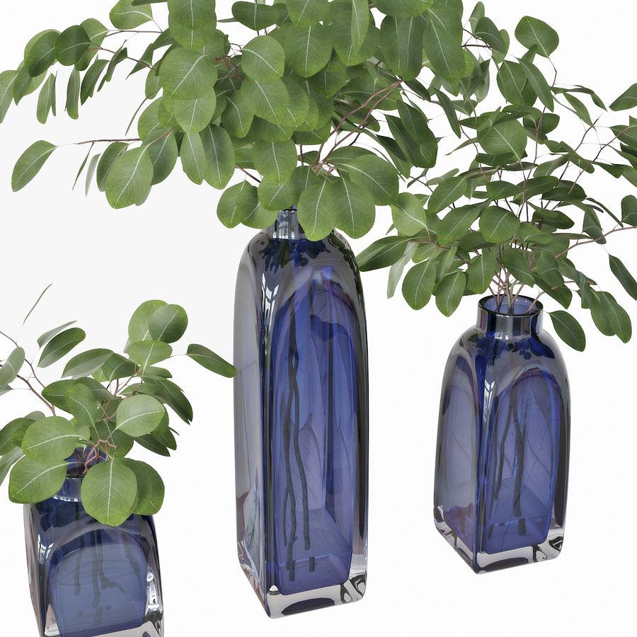 Eucalyptus 05 royalty-free 3d model - Preview no. 10